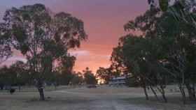 Rural / Farming commercial property for sale at 641 Balala Road Balala NSW 2358