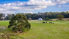 Rural / Farming commercial property for sale at 0 Mackrells Road Kithbrook VIC 3666