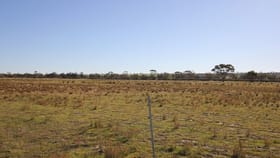 Rural / Farming commercial property for sale at Lot 27382 Dowerin-Meckering Road Meckering WA 6405