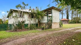Rural / Farming commercial property for sale at 652 Noosa Road Mothar Mountain QLD 4570
