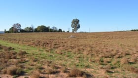 Rural / Farming commercial property for sale at 114 Bonnie Doon Road Monak NSW 2738