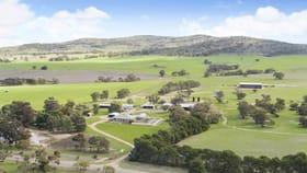 Rural / Farming commercial property for sale at 'Boudaglen' and 'Acacia Glen'  - 1884 Price Maurice Road Pekina SA 5431