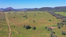 Rural / Farming commercial property for sale at 2529 Mt Nombi / Wyuna Road, 'Moolagundi' Mullaley NSW 2379