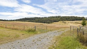 Rural / Farming commercial property for sale at Lot 1 Browns Road Loira TAS 7275