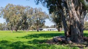 Rural / Farming commercial property for sale at 44 Ellis Road Violet Town VIC 3669