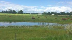 Rural / Farming commercial property for sale at 2 & 143/ Bruce Highway Bemerside QLD 4850