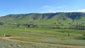 Rural / Farming commercial property for sale at 387 East Gilmore Road Tumut NSW 2720