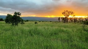Rural / Farming commercial property for sale at 2105 Granitevale Station - Granitevale Road Granite Vale QLD 4815