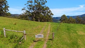 Rural / Farming commercial property for sale at 119 Lakeview Road Tongarra NSW 2527