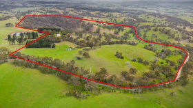Rural / Farming commercial property for sale at 655 Old Mill Road Kilmore VIC 3764