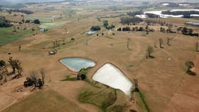 Rural / Farming commercial property for sale at 379 Bengeo Road Dunorlan TAS 7304