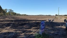 Rural / Farming commercial property for sale at Lot 1 Condamine River Road Pratten QLD 4370