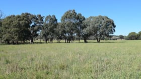 Rural / Farming commercial property for sale at Little Plains Road Blakney Creek NSW 2581