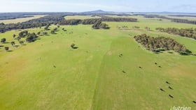 Rural / Farming commercial property for sale at 309 Musselroe Road Musselroe Bay TAS 7264