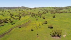Rural / Farming commercial property for sale at 460 Kars Springs Road Scone NSW 2337