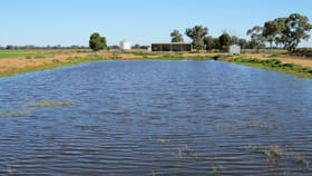 Rural / Farming commercial property for sale at 113 Tocumwal Road Deniliquin NSW 2710