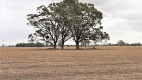 Rural / Farming commercial property for sale at 1813 Katandra Main Road Yabba North VIC 3646