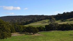 Rural / Farming commercial property for sale at 24, 45 Robinson Road Goulburn NSW 2580
