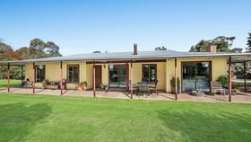 Rural / Farming commercial property for sale at 1194 Cope  Road Cope NSW 2852