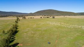 Rural / Farming commercial property for sale at Spring Mount' Crowther Road Gooloogong NSW 2805