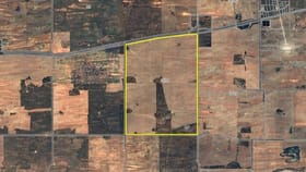 Rural / Farming commercial property for sale at 3076 Meridian Road Red Cliffs VIC 3496