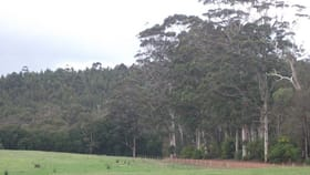Rural / Farming commercial property for sale at Lot 8691 Wheatley Coast Road Northcliffe WA 6262