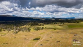 Rural / Farming commercial property for sale at 132 Lindsays Road Whitemore TAS 7303