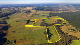 Rural / Farming commercial property for sale at 510 Chatham Valley Road Chatham Valley NSW 2787