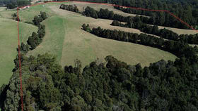 Rural / Farming commercial property for sale at 320 Phillips Track Ferguson VIC 3237