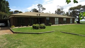 Rural / Farming commercial property for sale at 623 LOGIE BRAE ROAD Finley NSW 2713