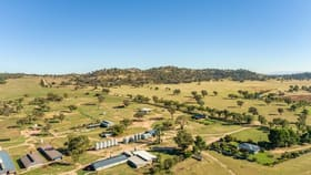 """Rural / Farming commercial property sold at """"Springview"""" Loch Lomond Road Gooloogong NSW 2805"""