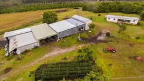 Rural / Farming commercial property for sale at 210 Benauds  Road Bora Ridge NSW 2471