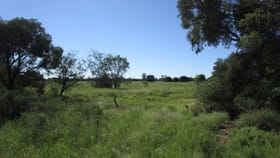 Rural / Farming commercial property for sale at 132-137 Roaches Road Tara QLD 4421