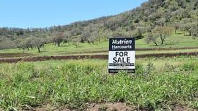 Rural / Farming commercial property for sale at 5/650 Goomburra Road Berat QLD 4362