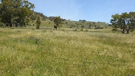 Rural / Farming commercial property for sale at Violet Town VIC 3669
