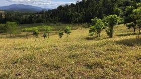 Rural / Farming commercial property sold at 367 Dingo Pocket Dingo Pocket QLD 4854