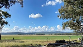 Rural / Farming commercial property for sale at Doona, 2989 Neilrex Road Coolah NSW 2843