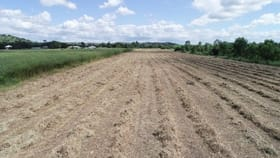 Rural / Farming commercial property sold at 45 Old Gracemere Road Fairy Bower QLD 4700