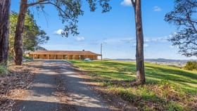 Rural / Farming commercial property for sale at 702 TOMEWIN ROAD Tomewin NSW 2484