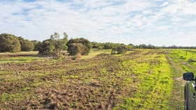 Rural / Farming commercial property for sale at 228 Rushmere Lane Coomunga SA 5607