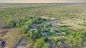 Rural / Farming commercial property for sale at 915 Gorge Rd Katherine NT 0850