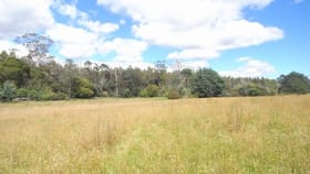Rural / Farming commercial property for sale at Lot 1 Dakins Road St Marys TAS 7215
