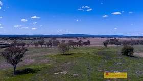 Rural / Farming commercial property for sale at 6/705 Springfield  Lane Gulgong NSW 2852