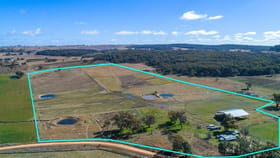 Rural / Farming commercial property for sale at 79 Montaza Road Gulgong NSW 2852