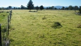 Rural / Farming commercial property for sale at Lot 123 Pollock Street Quirindi NSW 2343