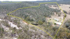 Rural / Farming commercial property for sale at 1671 Apple Tree Flat Road Ashford NSW 2361