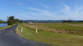 Rural / Farming commercial property for sale at 359 Riverbank Road Pimlico NSW 2478