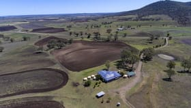 Rural / Farming commercial property for sale at 1311 Goomburra Rd Goomburra QLD 4362