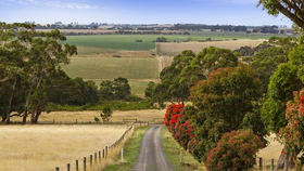 Rural / Farming commercial property for sale at 358 Yeo Yeodene Road Yeodene VIC 3249