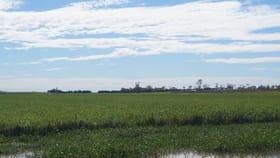 Rural / Farming commercial property for sale at 286 BARRETT ROAD Brandon QLD 4808